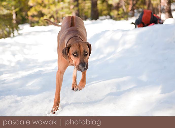 SnowTripBlog10